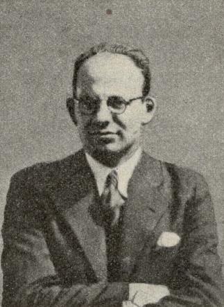 Henri Hoek