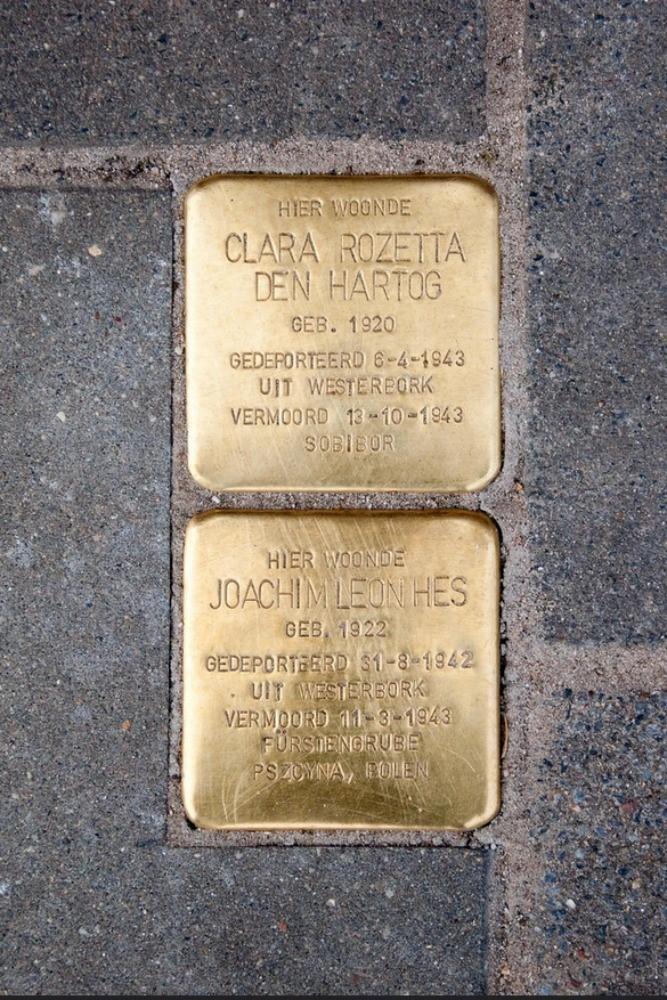 Clara Rozetta den Hartog